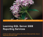 Learning SQL Server 2008 Reporting Services - Jayaram Krishnaswamy - 1st Edition 18